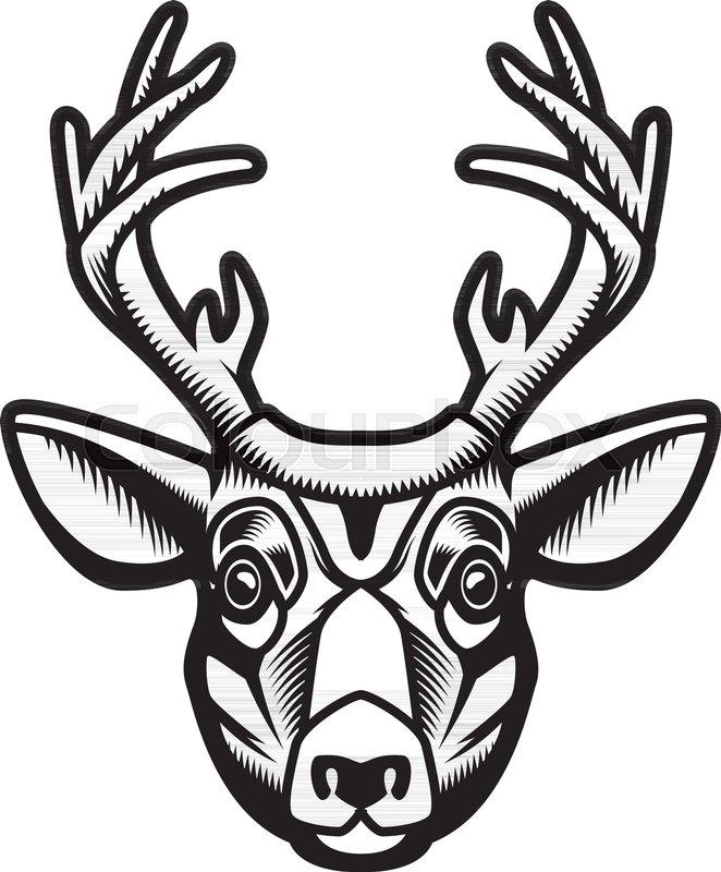662x800 Deer Head Illustration Isolated On Stock Vector Colourbox