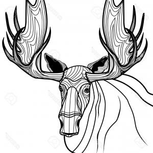 300x300 Hand Drawing Style Of Deer Head Vector Sohadacouri