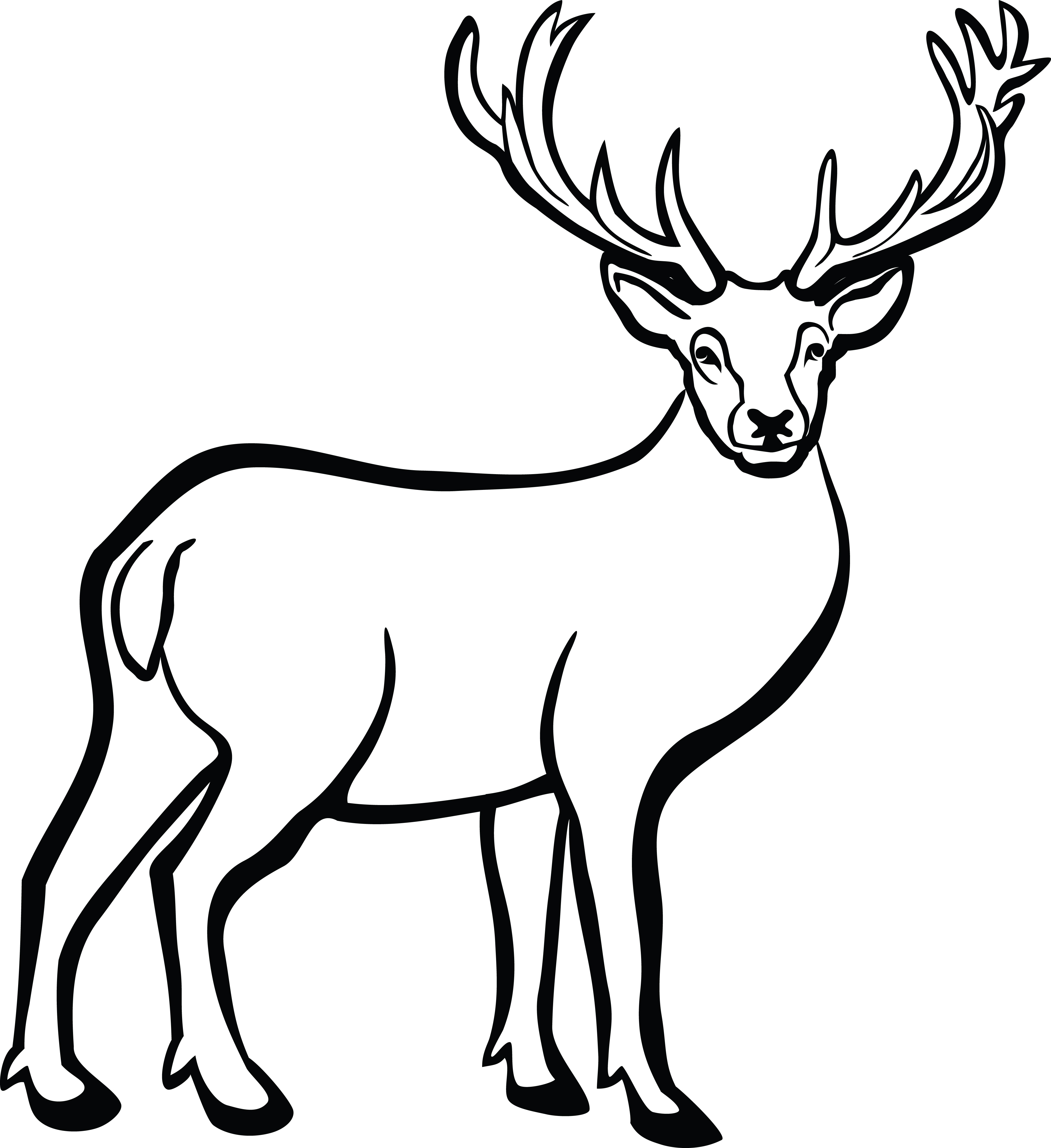 4000x4368 Buck Clipart Line Art, Buck Line Art Transparent Free For Download