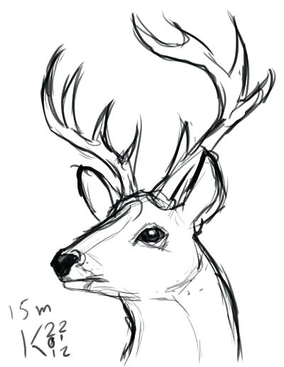 400x517 Deer Head Coloring Pages