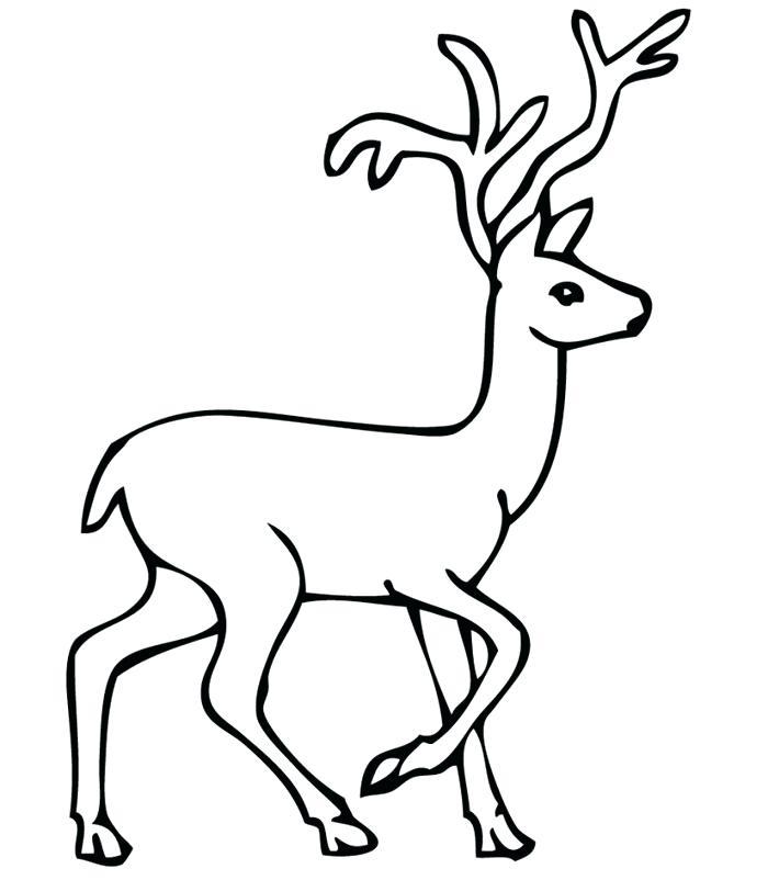 700x802 Deer Tail Template Reindeer Body Whitetail Deer Reindeer Outline