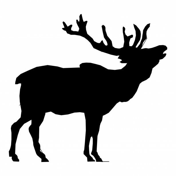 615x615 Elk Silhouette Drawing Free Stock Photo
