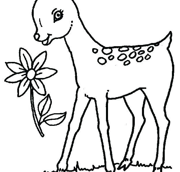 625x600 Animal Outline For Deer Running Illustration Skull Tattoo