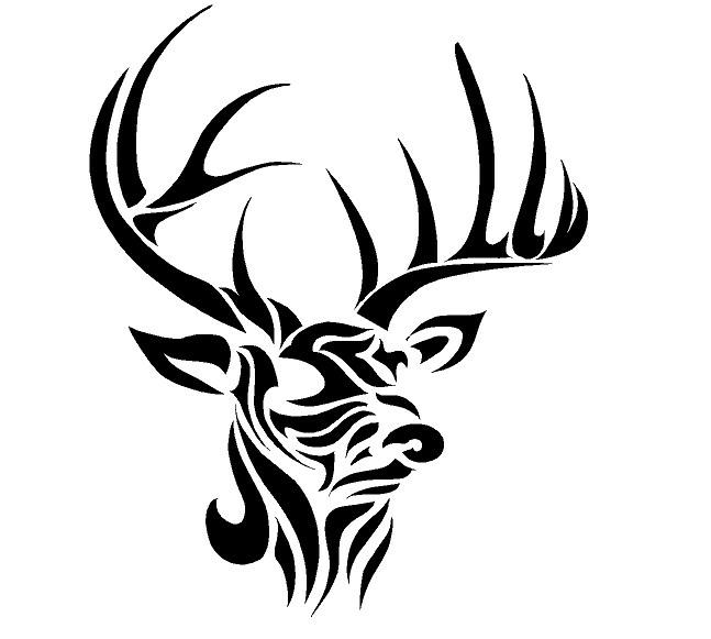 Deer Horns Drawing