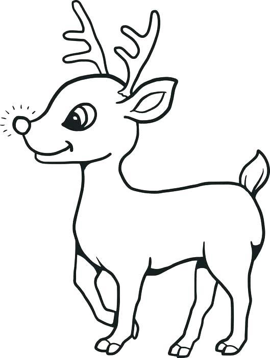 529x700 drawing of reindeer how to draw reindeer drawing reindeer