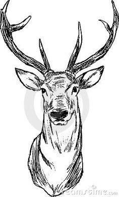 236x391 Afbeeldingsresultaat Voor Mannetjes Hert Tekening Crafts Deer