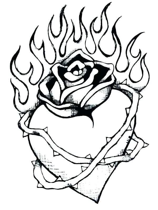 600x797 Coloring Pages Of Roses Adult Coloring Pages Roses Coiffurehomme