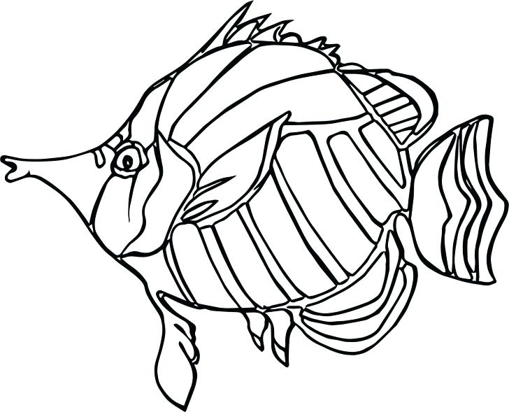 728x589 Coloring Pages For Adults Free Printable Mandala Animal Cute