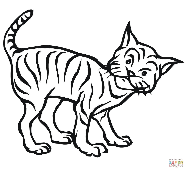 1500x1368 Desert Drawing Bobcat For Free Download