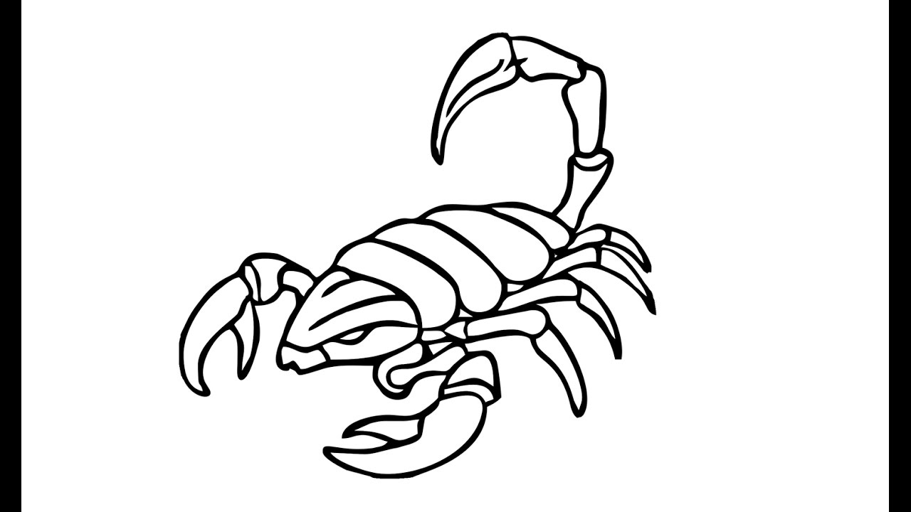 1280x720 How To Draw A Scorpion