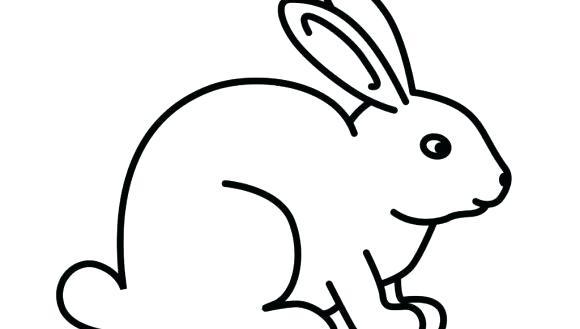 580x329 Animal Drawings Easy