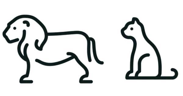 600x317 Easy Ways To Draw Animals