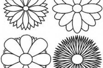 343x228 Easy Drawings Designs