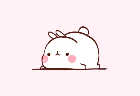 580x400 Chubby Bunny So Cute I'm Gonna Die Cute Animal Drawings Kawaii