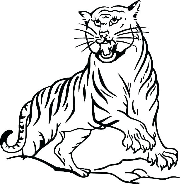618x631 detroit tigers coloring pages tigers batter baseball coloring