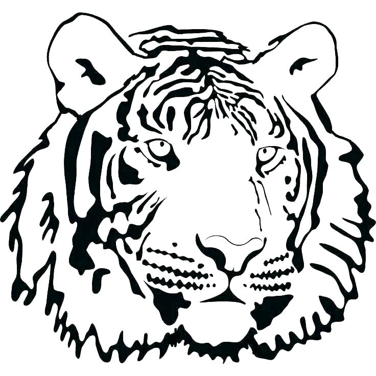 736x736 coloring pages of a tiger tiger coloring pages tiger coloring