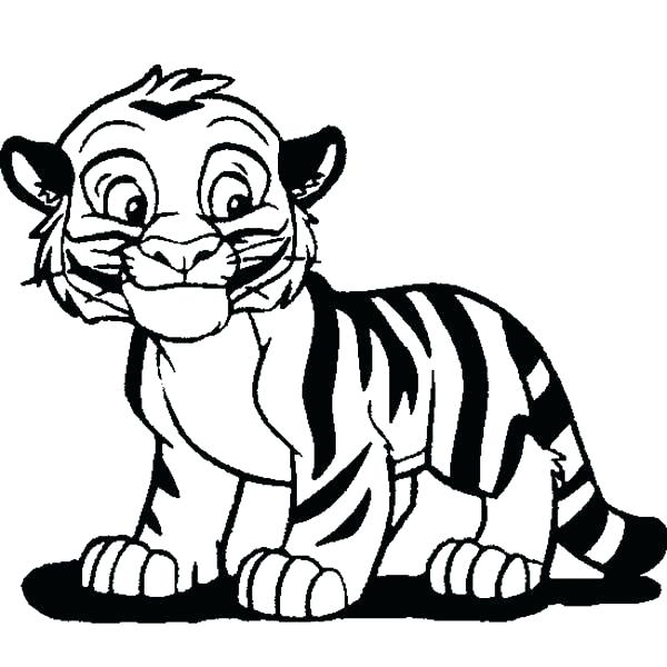 600x600 tigers drawing at free for personal use tigers drawing coloring