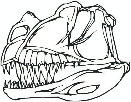 447x350 Dinosaur Bones Coloring Pages Dinosaur Bones Coloring Pages