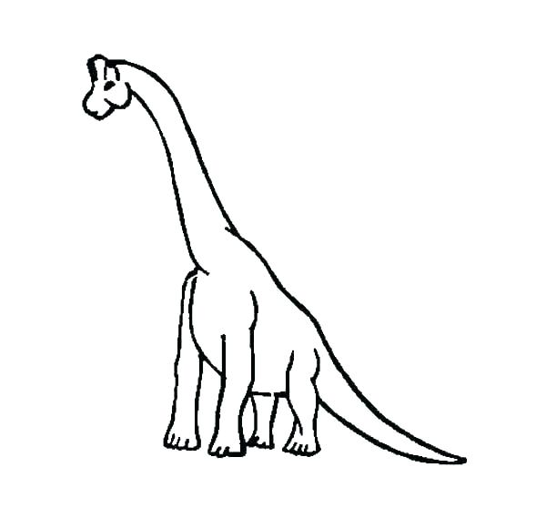 600x558 Dinosaur Skeleton Coloring Pages Fossils Coloring