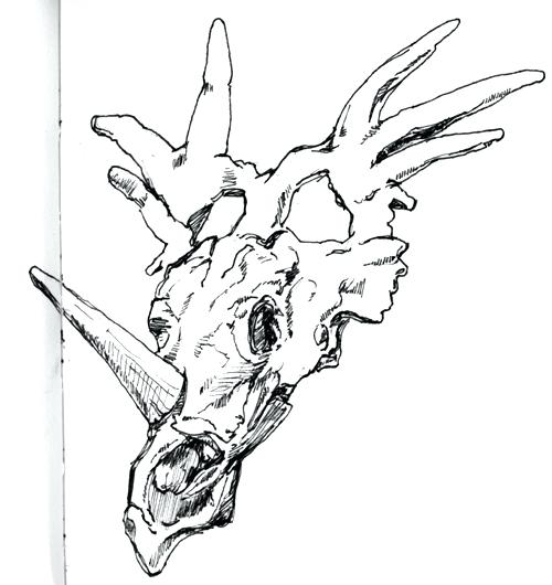 500x530 Drawing Of Dinosaur Draw Dinosaur Draw Dinosaurs Book And Kit
