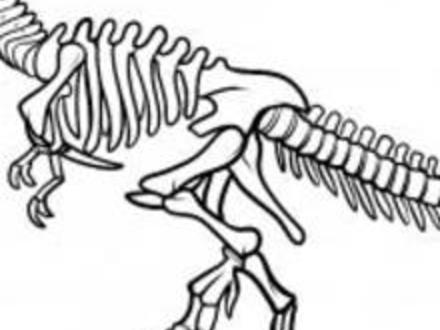 440x330 T Rex Skeleton Dinosaur Coloring Pages Coloring Pages, Dinosaur
