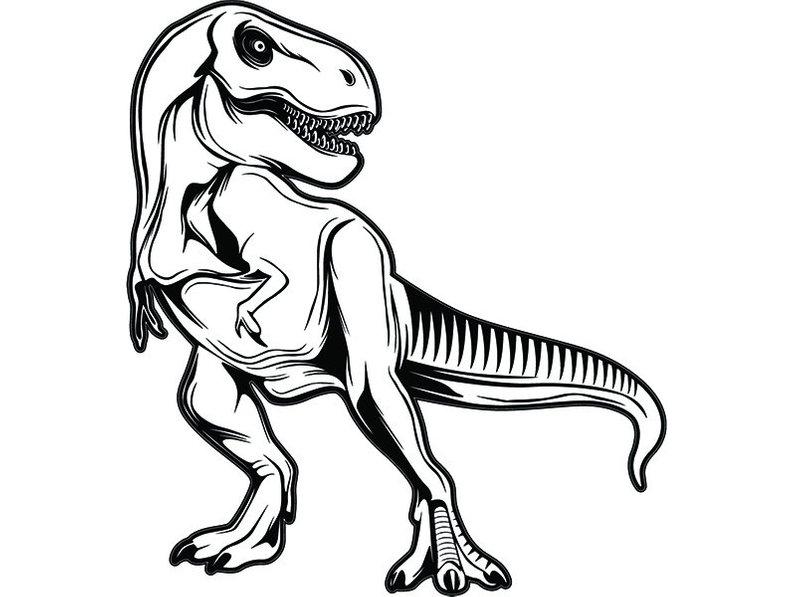 794x597 Tyrannosaurus Rex Dinosaur T Rex Archaeology Fossil Etsy