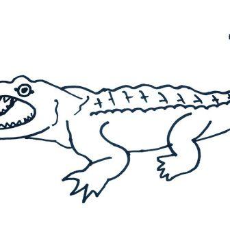 336x336 Cute Easy Dinosaur Drawing Video Head Fossil Realistic T Rex I
