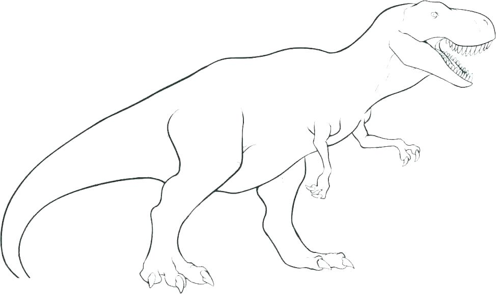 974x579 Dinosaurs Pictures To Color Dinosaurs Dinosaur Outline Pictures