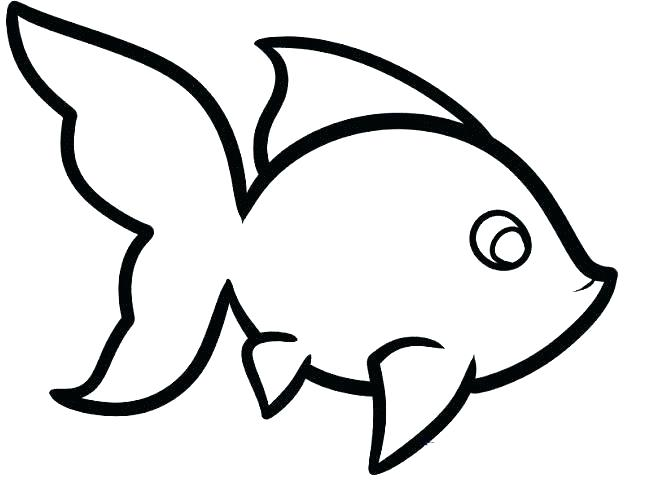 650x501 Outline Pictures Of Animals For Coloring Colouring Pages Easy