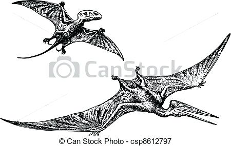 450x285 Pterodactyl Drawing Pterodactyl Or Dinosaur Pterodactyl Drawing