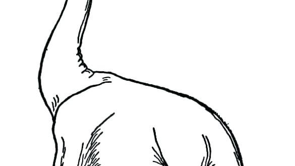 585x329 Argentinosaurus Coloring