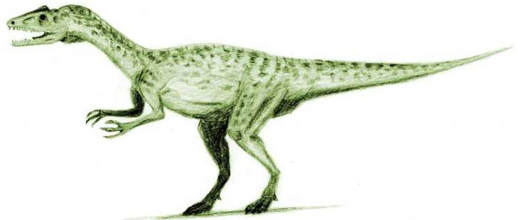 751x317 Monster Dinosaur Halticosaurus