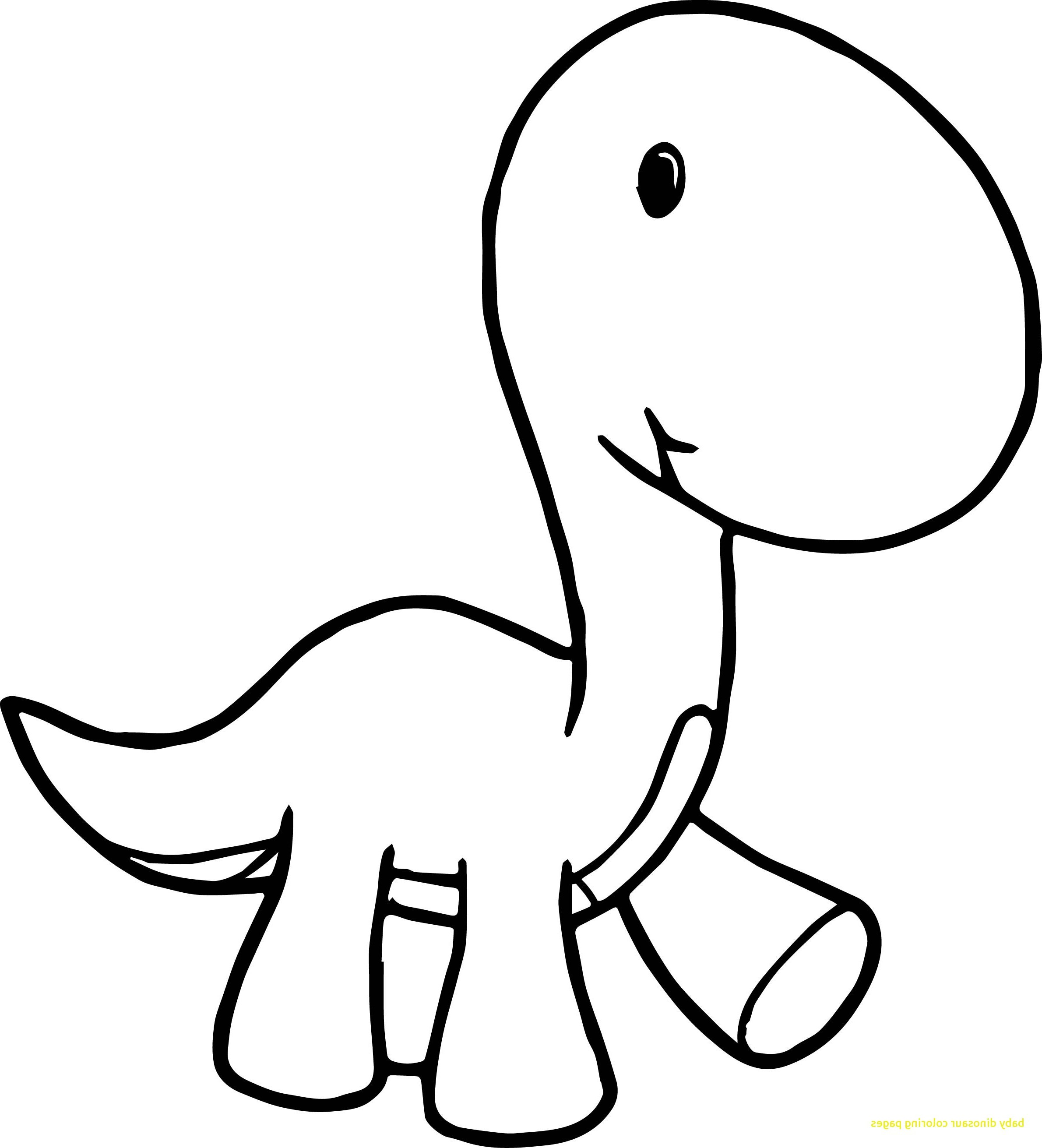 2380x2622 Dinosaur Skeleton Drawing Easy Step