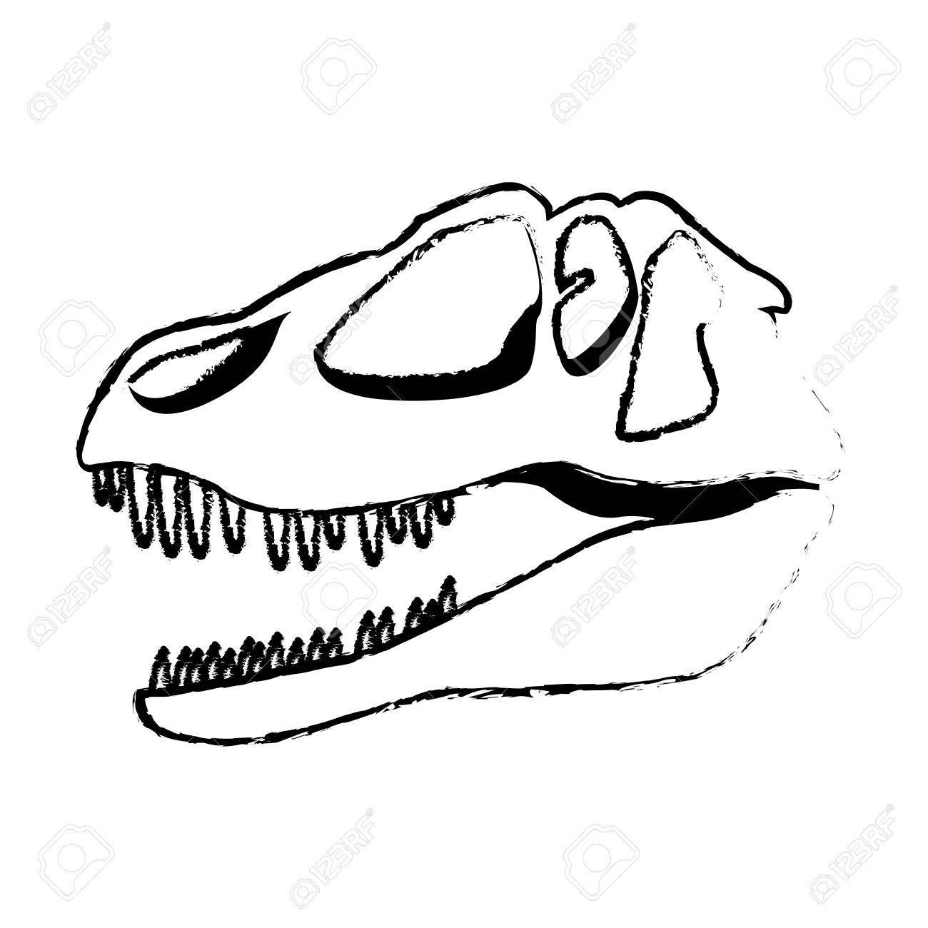1300x1300 Dinosaur Skull Clipart