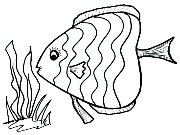 728x546 Coloring Pages Halloween For Adults Free Disney Easy Stylized Fish