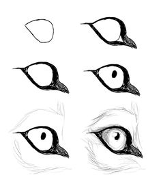 Dog Eyes Drawing
