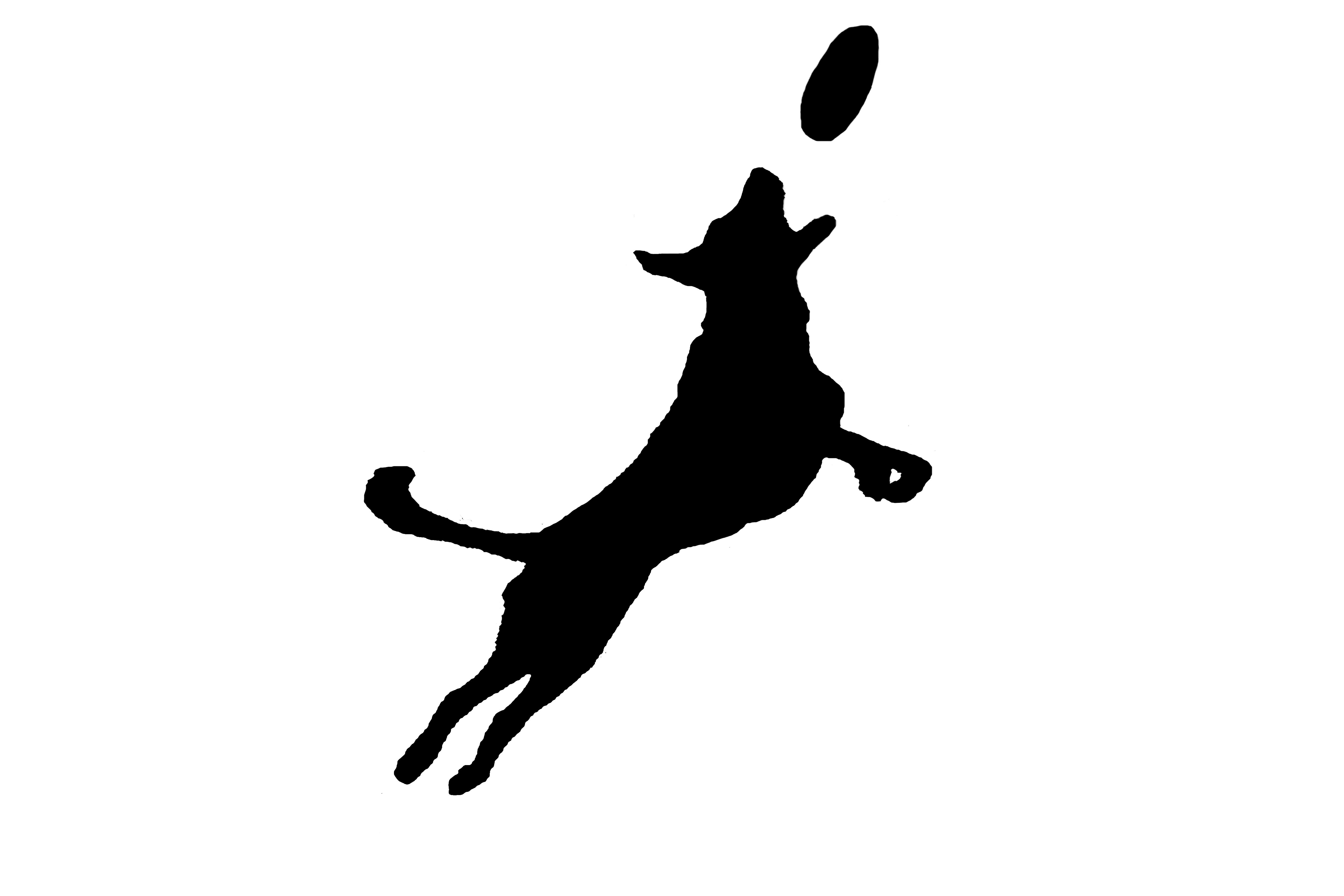 Dog Jumping Drawing