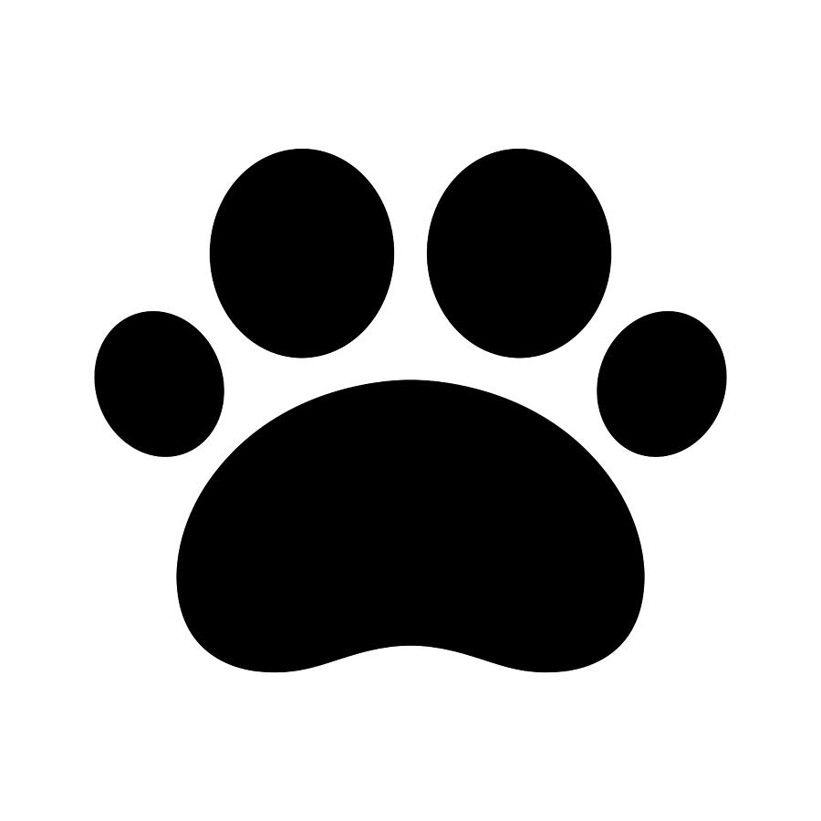 900x900 Drawing Trail Paws Vector Illustration Dog Cat Icon Logo Clipart