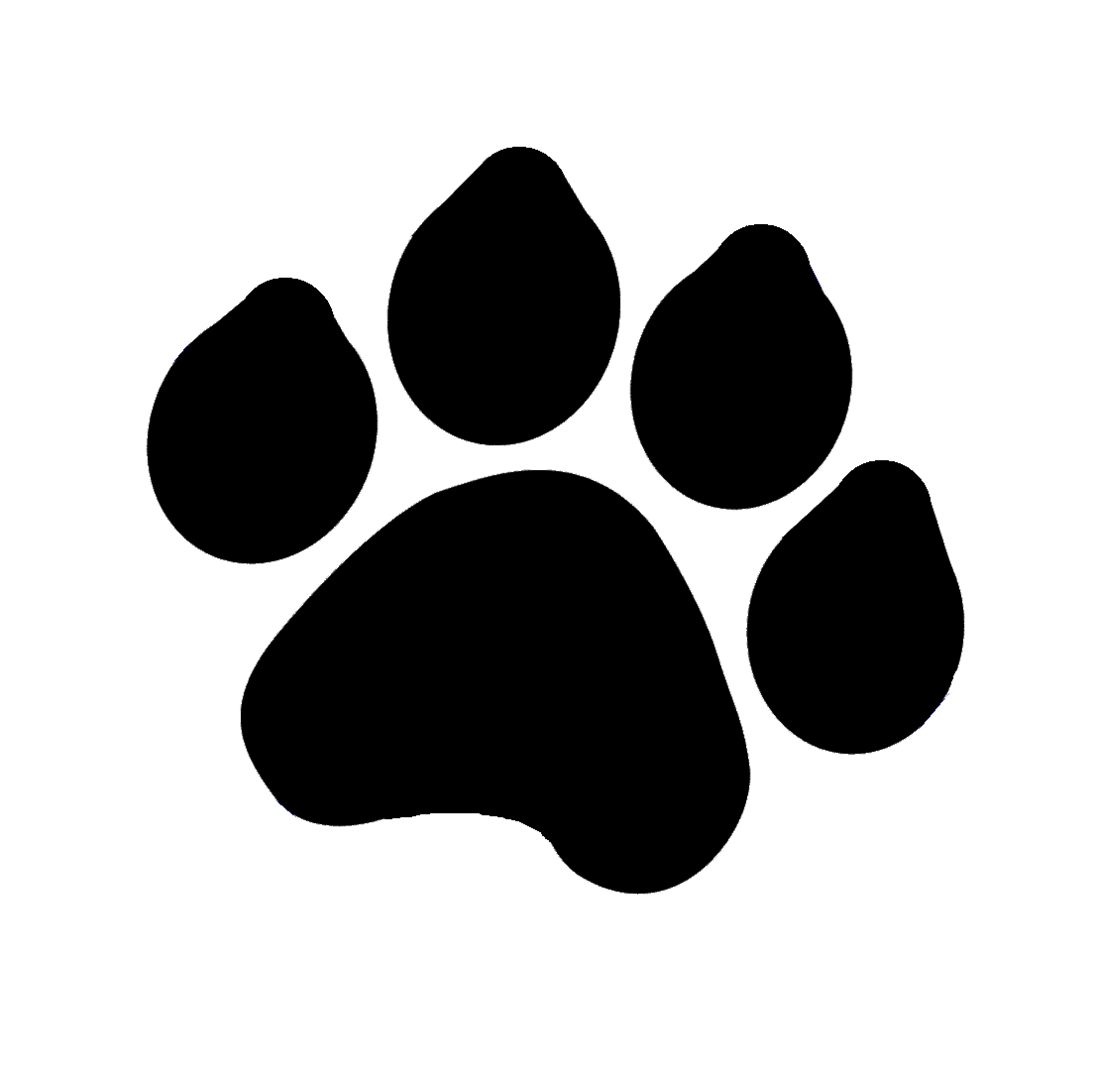 Dog Paw Print Drawing
