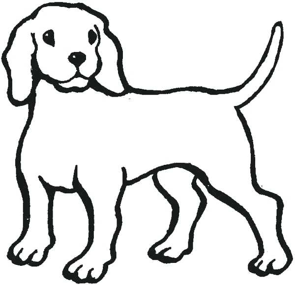 600x581 Line Drawing Dog Line Drawing Dog Bone