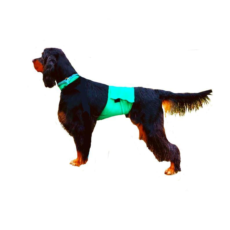 794x794 dog pee coat dog speedo dog grooming coat etsy