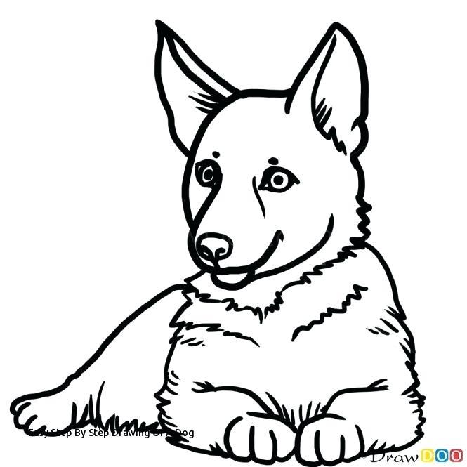 Dog Running Drawing