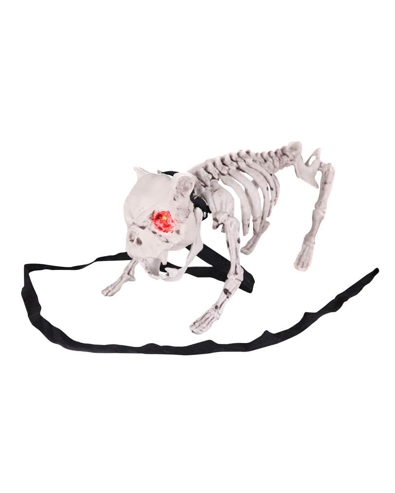 812x1012 Barking Dog Skeleton Halloween Dog With Led Eyes Horror
