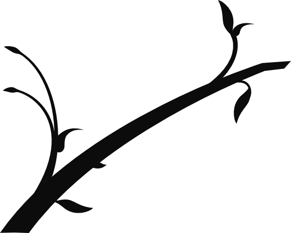 600x480 Dogwood Vector Branch Transparent Png Clipart Free Download