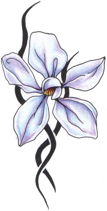 407x802 Magnolia Tribal Transparent Png Clipart Free Download