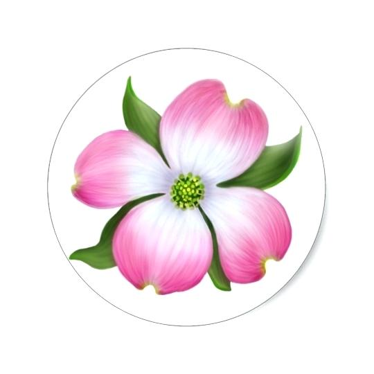 540x540 Dogwood Flower Creator House Simple Picture