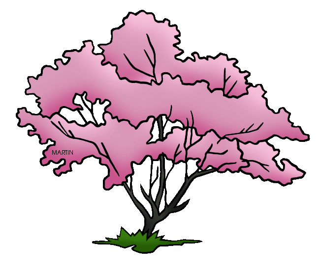 648x552 Collection Of Free Transparent Tree Dogwood Download On Ui Ex