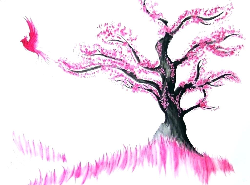 1024x757 drawing of a cherry blossom tree cherry blossom tree painting how