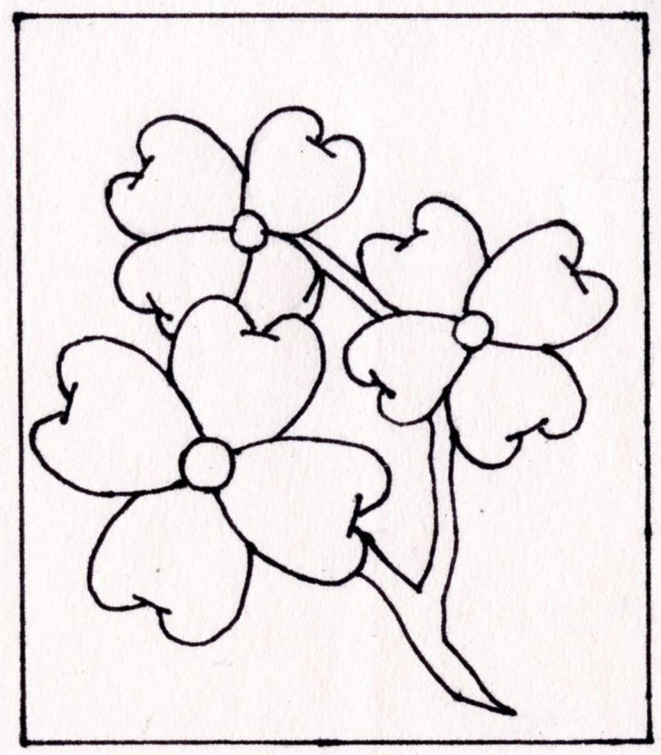 Dogwood Tree Drawing