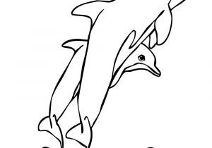 300x210 dolphin cartoon drawing drawing dolphin cartoon dolphin cartoon